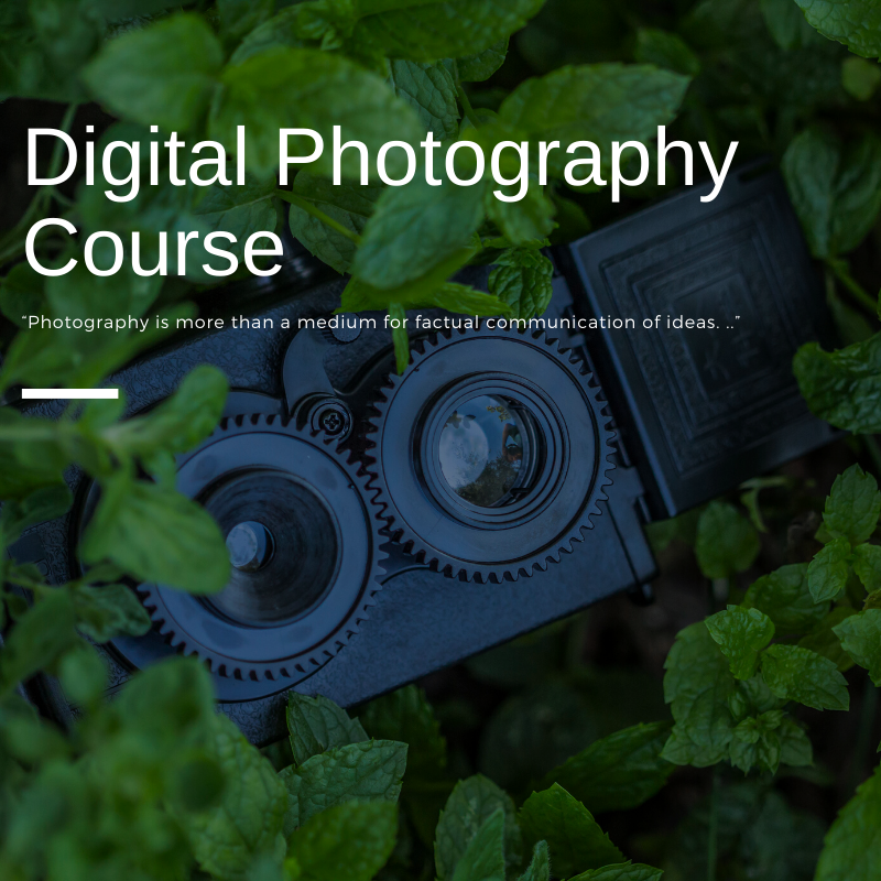 Basic Digital Photography Course